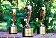 Telly Awards 2016